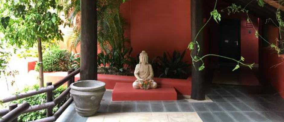 Asia Gardens 2 CROP
