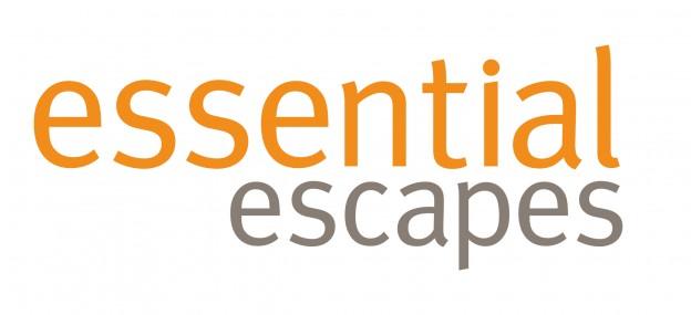 EE Logo 2 orange