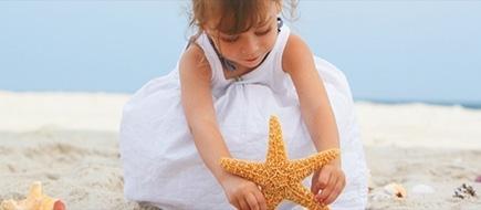 starfish-newsite-blog